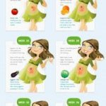 Best Infographic About Pregnancy 45