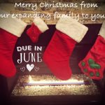 Twin Christmas Announcement 24