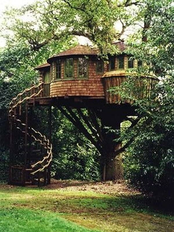 Treehouse 7 Result